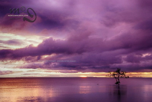 HDR image of another colourful sunset in Southern Leyte by Mona Dienhart